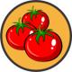 Seminte de tomate